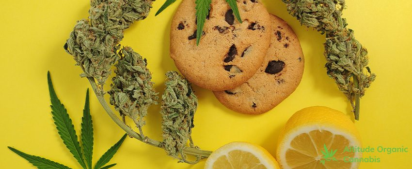 Recreational Marijuana - Answers to Your Questions